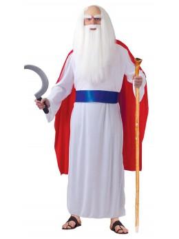 déguisement de druide