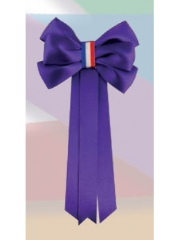 Cocarde conscrits classe violette