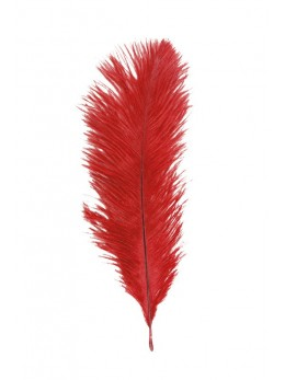 5 Plumes autruche rouge 20-25cm