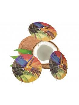 6 parapluies à cocktail perroquet