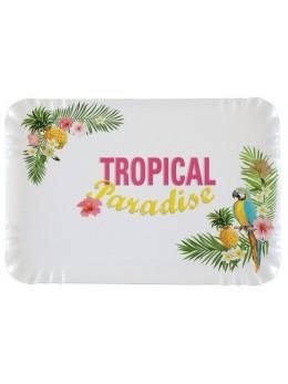 5 plateaux rectangulaires tropical