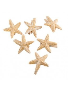 Lot 6 pinces à linge étoiles de mer