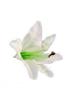 Sachet 6 fleurs tropicales blanches 13cm