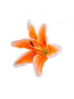 Sachet 6 fleurs tropicales orange 13cm