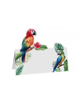 6 Marque place perroquet